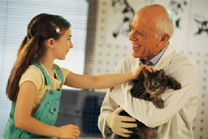 veterinarian holding a cat, little girl petting the cat